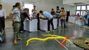Komunitas Reptil Meriahkan Penutupan Inkubator Expo 2015